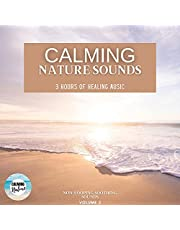 Calming Nature Sounds: 3 Hours of Healing Therapy: Volume 2: Non-Looping Soothing Sounds