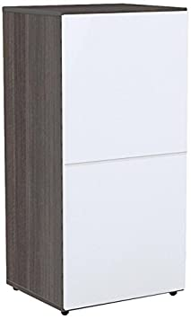 Nexera 221233 Allure 1-Door Bookcase, Ebony and White