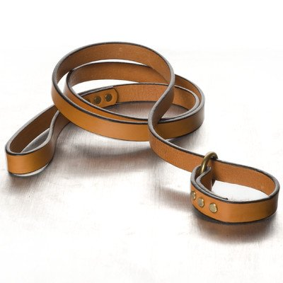 Polo Slip Dog Lead Color: London Tan