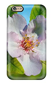 Nannette J. Arroyo's Shop Hot Almond Flower First Grade Tpu Phone Case For Iphone 6 Case Cover
