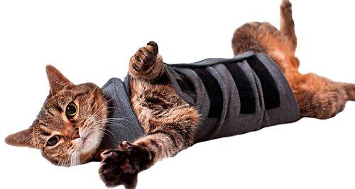 Thundershirt Beruhigungsweste - Katzenmantel, grau