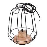 B Blesiya Iron Bulb Guard Lamp Cage Pendant Light, Lamp Holder, Ceiling Light Bulb Covers,Vintage Style,Lights Fixture