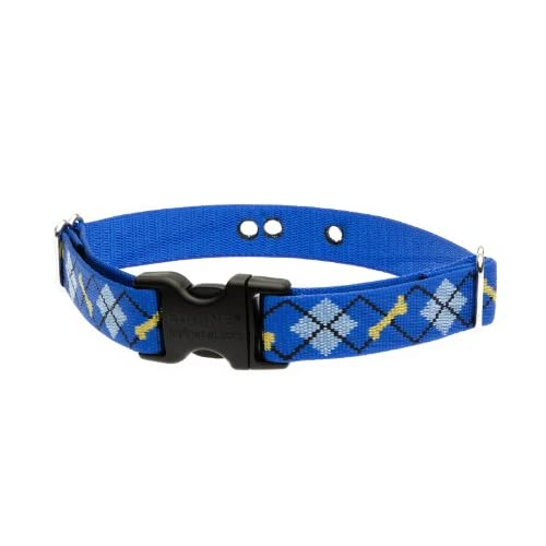 durable modeling Lupine 1 Inch Dapper Dog Containment Collar Strap for Medium and Large Dogs