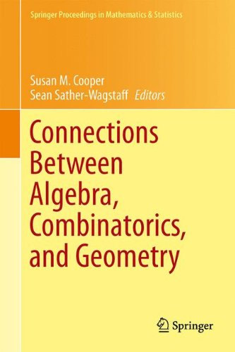 Connections Between Algebra, Combinatorics, and Geometry (Springer Proceedings in Mathematics & Statistics)