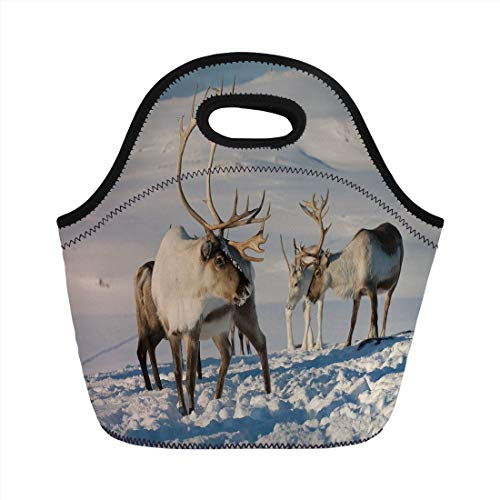 (MLikdfjapf Neoprene Lunch Bag,Winter,Reindeers in Natural Environment Tromso Northern Norway Caribou Antler Wildlife Decorative,for Kids Adult Thermal Insulated Tote Bags Handbag for School Office)
