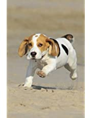 Beagle: journal or notebook with 150 lined pages
