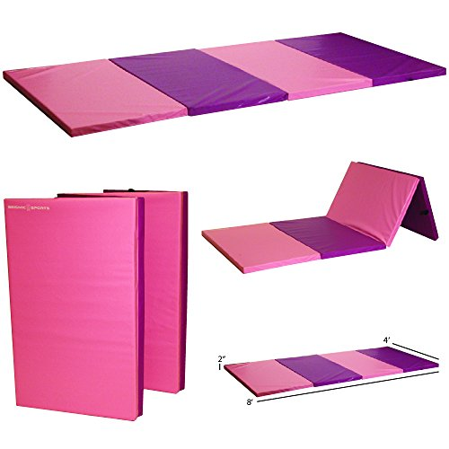 Seismic Sports - SSM-482PP - Pink and Purple Gymnastics Mat for Tumbling Yoga Exercise Karate Cheer, 4' x 8' x 2'