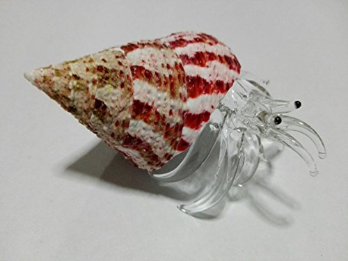 Rare item Nice glass blowing Hermit crab natural seashell Pink shells : (Copter shop) (Moose A Moose Halloween Songs)