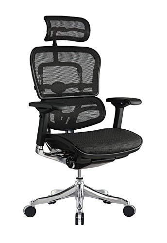 Attrayant Eurotech Ergo Elite Mesh High Back Executive Office Chair