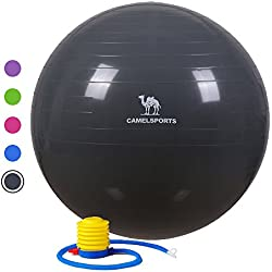 Camel Thick Exercise Ball with Quick Pump for Yoga Fitness Stability & Balance - Anti-Burst & Non-Slip Grey 75cm