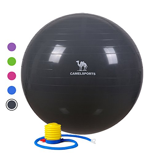 Camel Thick Exercise Ball with Pump Yoga Balls for Fitness Stability & Balance - Anti-Burst & Non-Slip 75cm Grey by Camel