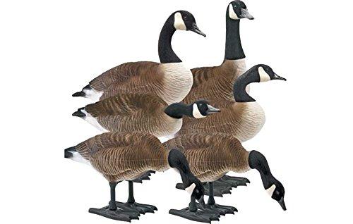 Goose Full Body - 1