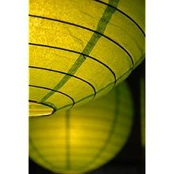 """Wayfair Paper Lanterns 16"""" Chartreuse Green"""
