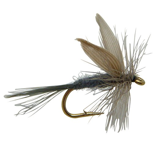 Fly Fishing Fly, Blue Dun, Dry Fly (Size 14, 6 Pack) (Dry Dun Blue Fly)