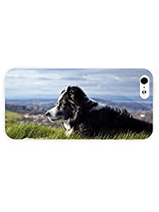 3d Full Wrap Case for iPhone 5/5s Animal Border Collie26 by runtopwell