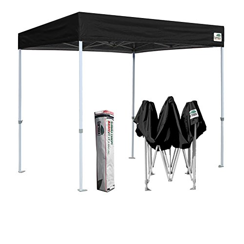 Eurmax Basic 8x8 Feet Ez POP up Canopy Party Tent Commercial Gazebo Bonus Deluxe Carry Bag (Flat Roof-Black)