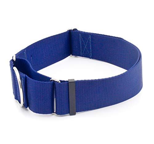 2 Inch Width Martingale Dog Collars - Heavy Duty Nylon (2