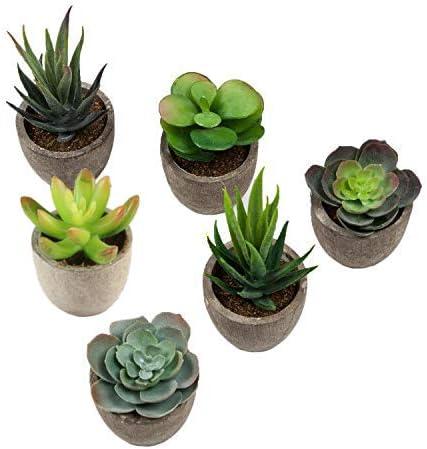 Gaoominy 6 Pi/èces Plantes Succulentes Artificielles Lotus Paysage D/écoratif Fleur Vert Faux Succulentes Plante en Pot Fleurs Jardin Arrangement de Mariage D/écor