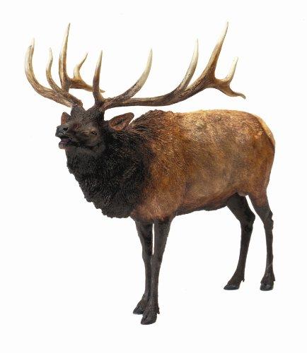 Hunter Dan Bull Elk Rocky Mountain Monster