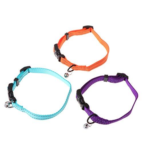pet collar anti flea adjustable