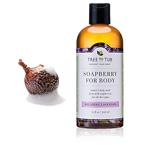 Deep Moisturizing Body Wash for Dry Skin, pH 5.5—the Only Organic Body Wash that Naturally Hydrates with Creamy Lather from Soap Nuts / Soapberries, Relaxing Lavender, 11oz—Tree to Tub