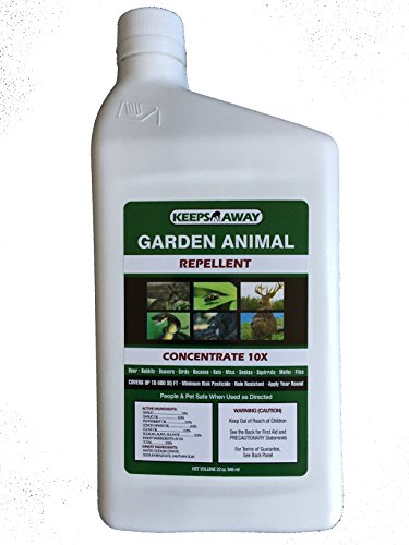 KEEPS AWAY GARDEN ANIMAL REPELLENT 10X concentrate 32 oz