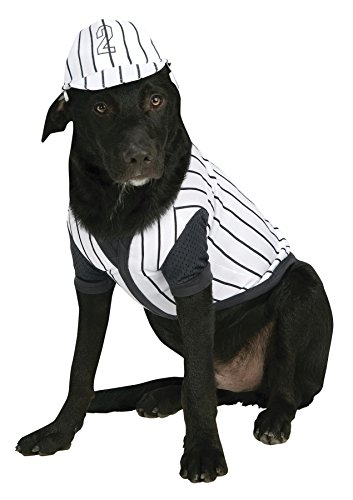 Pet Costume Baseball Player Sm