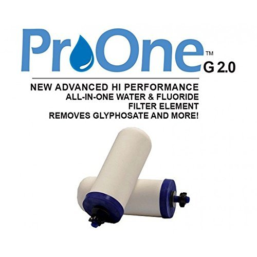 ProOne 5'' G2.0 filter elements - per pair by ProOne®