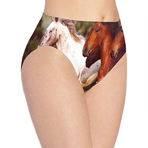 Bikini Mustang Underwear - Womens Underwear Mustangs Wild Horses Trendy Bikini Brief Hipster Panties