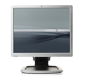 "HP L1950g - Monitor (48,26 cm (19""), 5 ms, 300 cd / m², Plata, Kensington, 100 x 100 mm)"