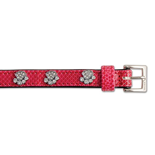 Ancol Sparkly Paw Crock Collar 25-31cm Size 2