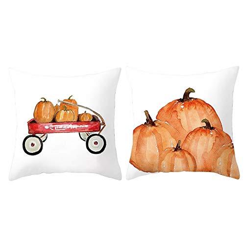 Decemter Fall Pumpkin Decorative Throw Pillow Covers Soft Cotton Blend Thanksgiving Pillowcases 18x18 Pack of 2