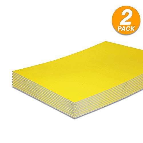 Foam Boards Lightweight Sign Blank Foam Core Poster Backing Boards School and Office Signboard Durable Poster Sheets Yellow Blank Signs for Presentation and Crafts (Pack of 2) by - Emraw (Best Paint For Foam Board)