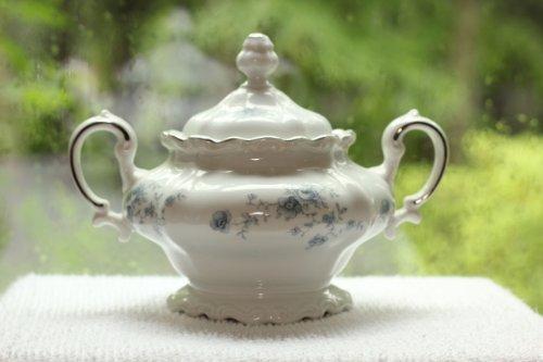 Johann Haviland of Bavaria, Germany - Blue Garland Pattern Sugar - Haviland Porcelain Bowls