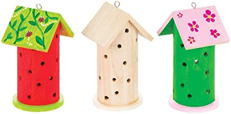 for Kids Arts and Crafts Projects Baker Ross AT884 Wooden Ladybird House Kits Assorted Pack of 2