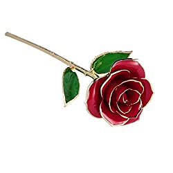 NICEAO Love Forever Long Stem Gold Foil Trim Red Rose Flower with Transparent Stand, Best Gift for Valentines Day, Mothers Day, Anniversary, Birthday Gift, Treating Yourself, Galentine's Day