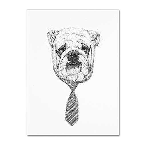 Bulldog by Balazs Solti,  Canvas Wall Art