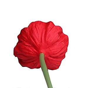 """Mandy's 10pcs Red Poppies Silk Artificial Flowers 12.5"""" PU for Wedding Home & Kitchen (vase not Include) 5"""