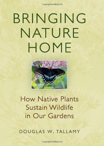 Bringing Nature Home: How Native Plants Sustain Wildlife in Our Gardens
