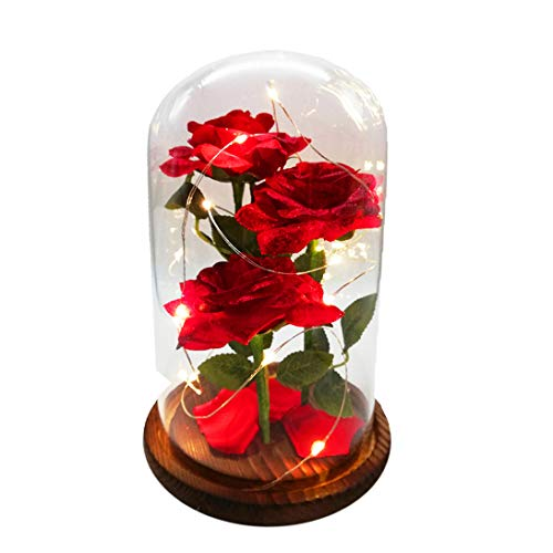 URBANSEASONS Beauty and The Beast Rose Enchanted Rose,Red Silk Rose and Led Light with Fallen Petals in Glass Dome on Wooden Base, for Valentine's Day Wedding Anniversary Mother's Day Birthday Party ()