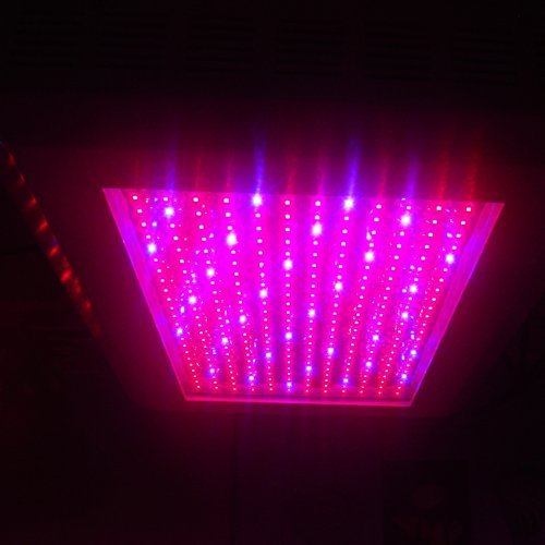 Pro Series Led Grow Light - 2