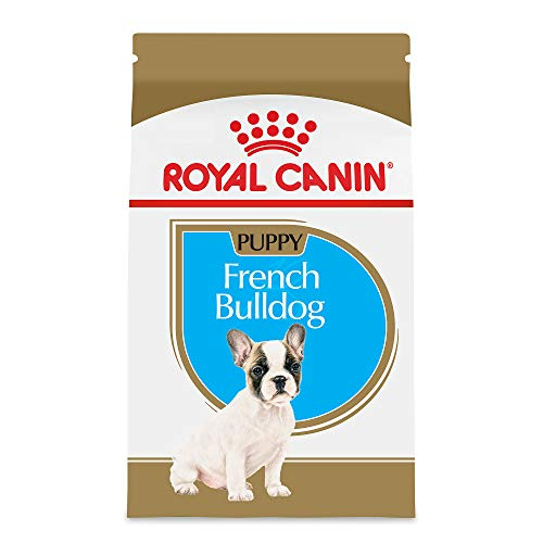 Royal Canin French Bulldog Puppy Breed Specific Dry Dog Food, 3 lb. bag (Best Dog Food For French Bulldog Puppies)