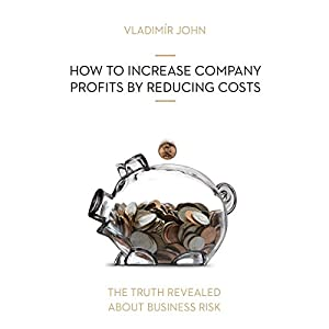 How to increase company profits by reducing costs (The truth revealed about business risk) Hörbuch