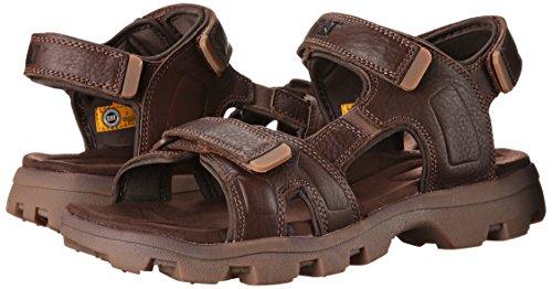 Buy Caterpillar Men's Cat Footwear