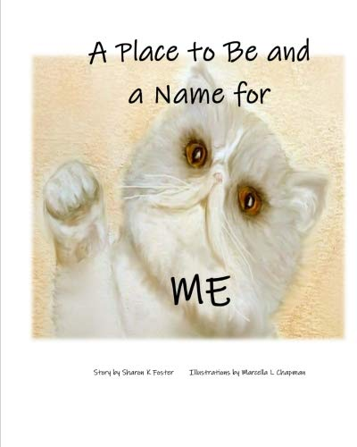 A Place to Be and a Name for Me: A children's picture book story about one cat's journey and hope to find a forever home