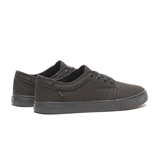 Élément Darwin Chaussure Noir / Noir