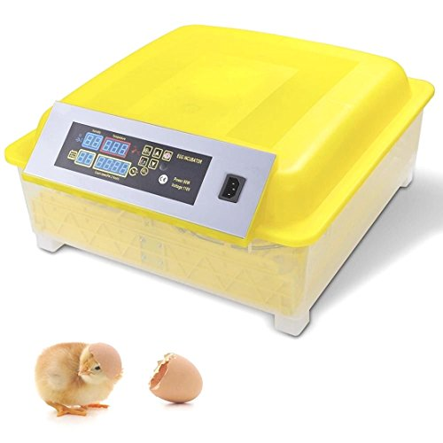 48Egg Incubator Digital Automatic Turner Hatcher Chicken Egg Temperature - Online Winnipeg Sun