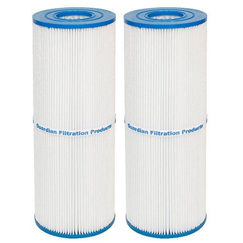 Guardian Pool/Spa 2 Pack Filters - Replaces Unicel C-4326, C-4625, Filbur FC-2375, Pleatco PRB-25-25 sq. ft.