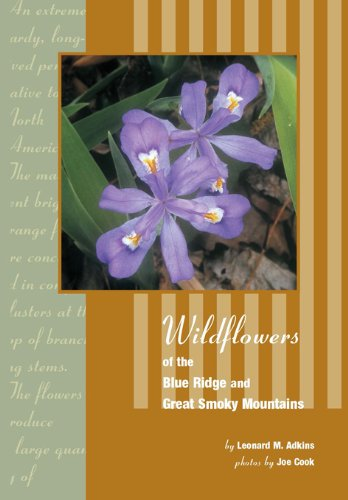 Wildflowers of Blue Ridge and Great Smoky Mountains