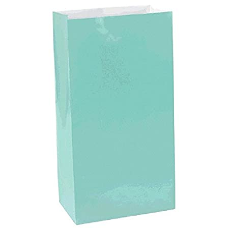 Robins Egg Blue Mini Paper Bags Party Accessory Amscan 370202.121